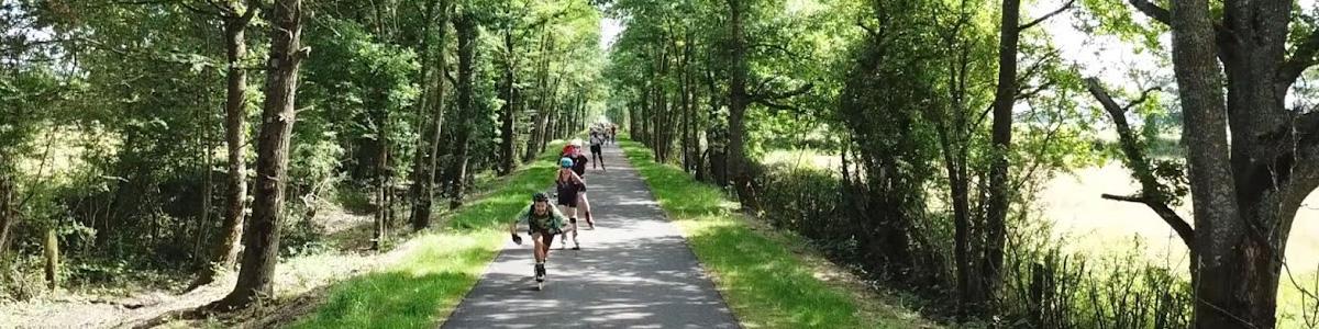 groupe de rollers en forêt